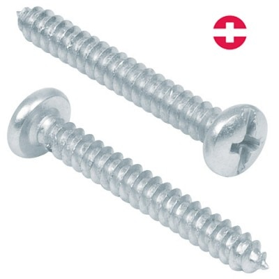 "Combination Phillips, 1"" Sheet Metal Screws Fiero"